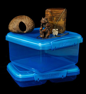 A collection of objects, a medicine box made from a nut from India, an Inro from Japan and Tupperware bought in the UK