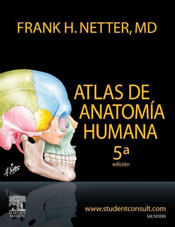 Netter - Atlas de Anatomia Humana 5ª Edición | booksmedicos