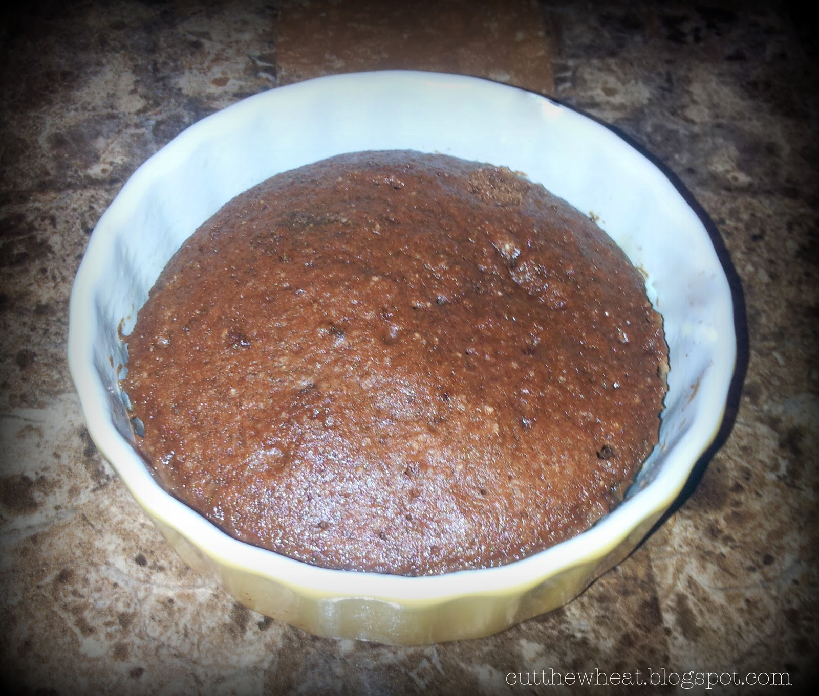 60 Second Paleo Chocolate Microwave Cake!