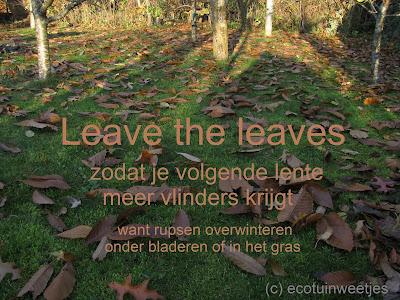 Bladeren laten liggen in de tuin, leave the leaves, vlinders helpen