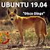 Ubuntu 19.04 se llamará Disco Dingo en referencia al perro originario de Australia.