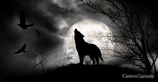 a lua muda o comportamento dos animais
