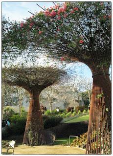 Getty Center Gardens, February 2013 (www.3rsblog.com)