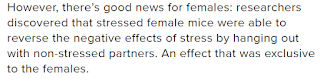 stress definition female