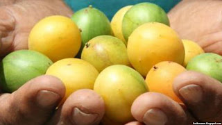 umbu fruit images wallpaper