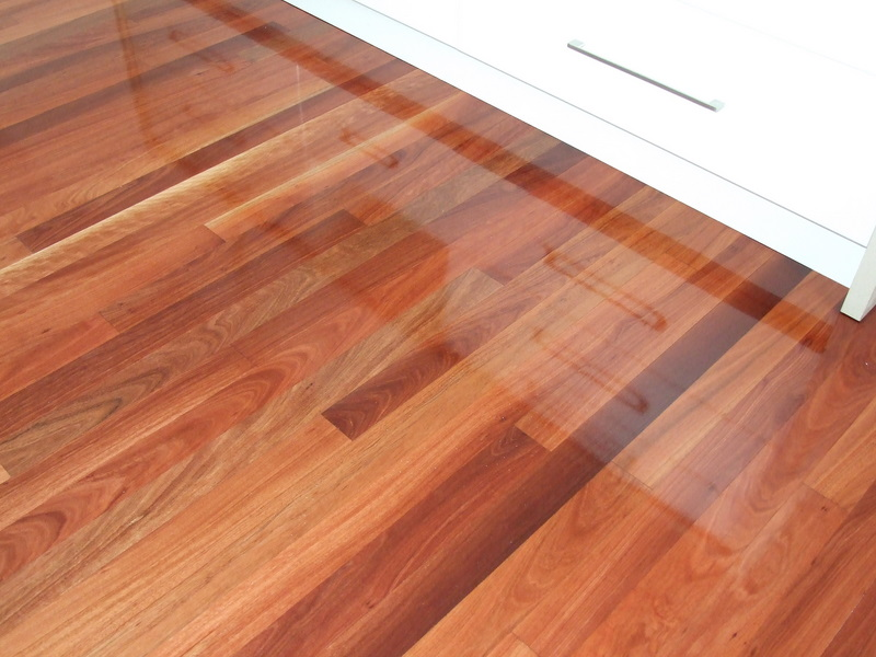 Way of the sander gloss or satin which is the finish for - Satin vs semi gloss ...