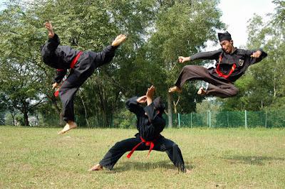 As artes marciais mis perigosas do mundo