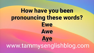 Get the correct pronunciation of  these words: ewe, awe & aye