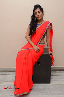 Actress Tejaswini Pictures in Saree at Pratikshanam Audio Launch  0105.JPG