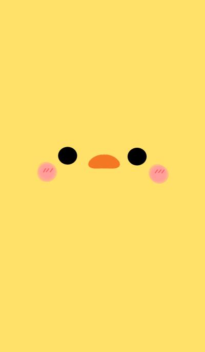 cute cute chick