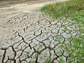 Perubahan Lingkungan, Dampak, dan Tindakan Perbaikannya
