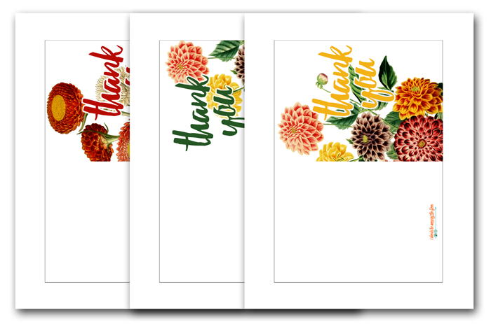 Three Free Thank You Cards