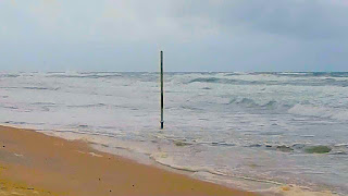 Photo of King Tides Wipe out Gold Coast Beaches 2013
