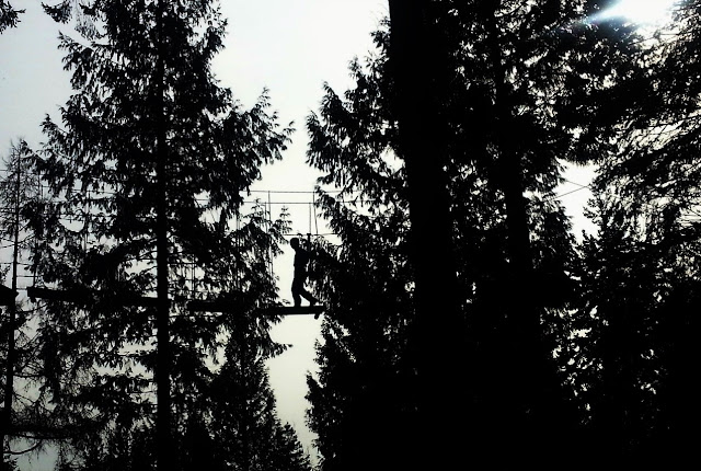 Silhouette of Boy on Rope Bridge at Go Ape