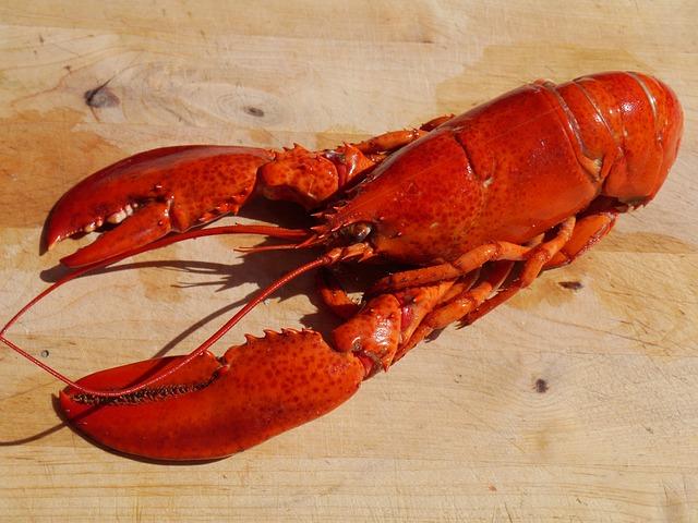 lobster abadi