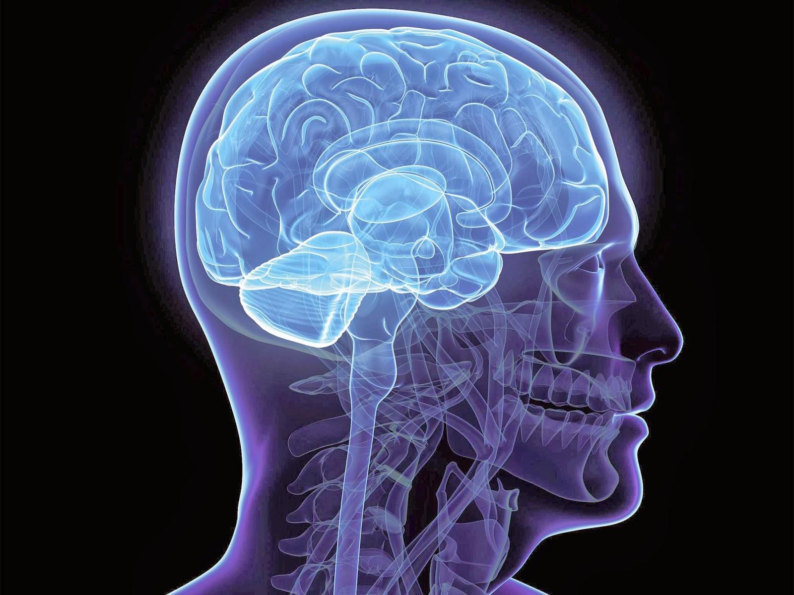 Biology of mind