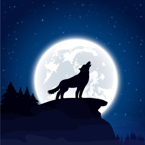 Hình ảnh Wolf
