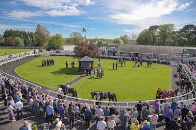 Naas Racecourse, Ireland