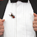 Groom sues clothing brand, Because He Found Bugs In His Suit