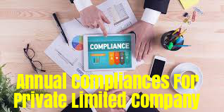 Annual-Compliances-Private-Limited-Companies-Act-2013