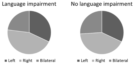 図:子供の言語障害と脳半球
