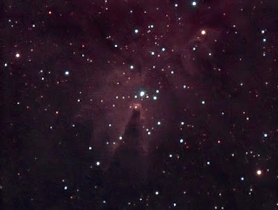 NGC 2264, nebulosa