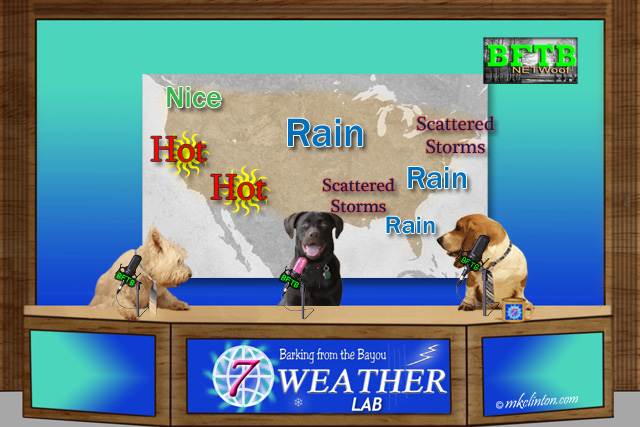 BFTB NETWoof Weather with U.S. forecast on the back screen