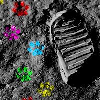 Nos hacen llegar una fotografía de las huellas de EL PERRO ARCOÍRIS SONRÍE EN CICE en la luna.