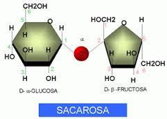 Glucosa y fructosa azucares reductores