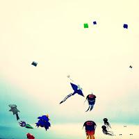 sortie avec enfant famille balade chatelaillon plage festival cerf volant