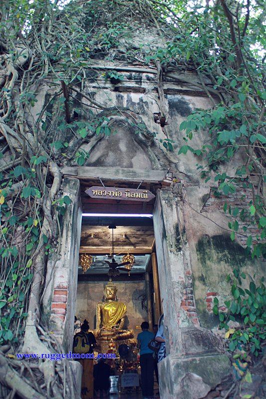Thailand | Wat Bang Kung Yang Unik Di Amphawa