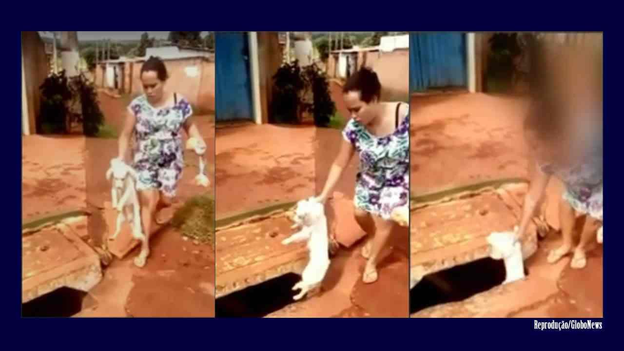 Vídeo mostra mulher jogando cachorro dentro de bueiro em Novo Gama, GO