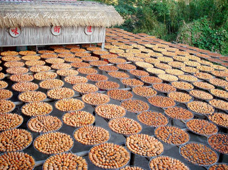 蘭州牛肉麵|味衛佳柿餅觀光農場