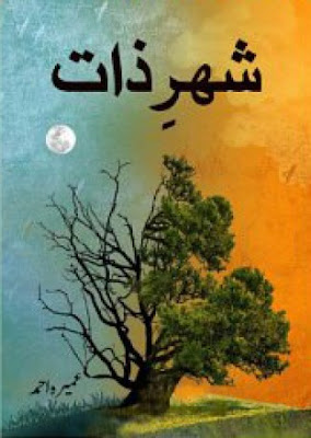 Shehr-e-Zaat Urdu Novel by Umera Ahmed