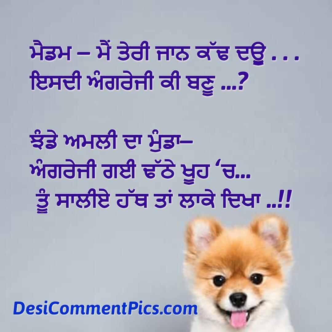 download funny quotes in punjabi