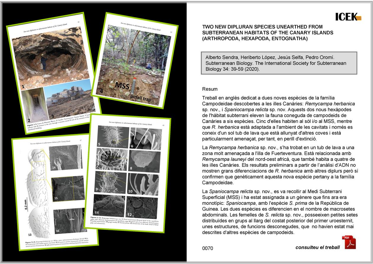ttp://www.guimera.info/sarawak/00-ICEK/0070.pdf