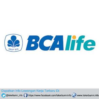 Lowongan Kerja PT Asuransi Jiwa BCA 2017 Banyak posisi