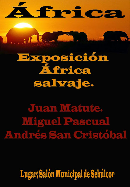 expo-africa
