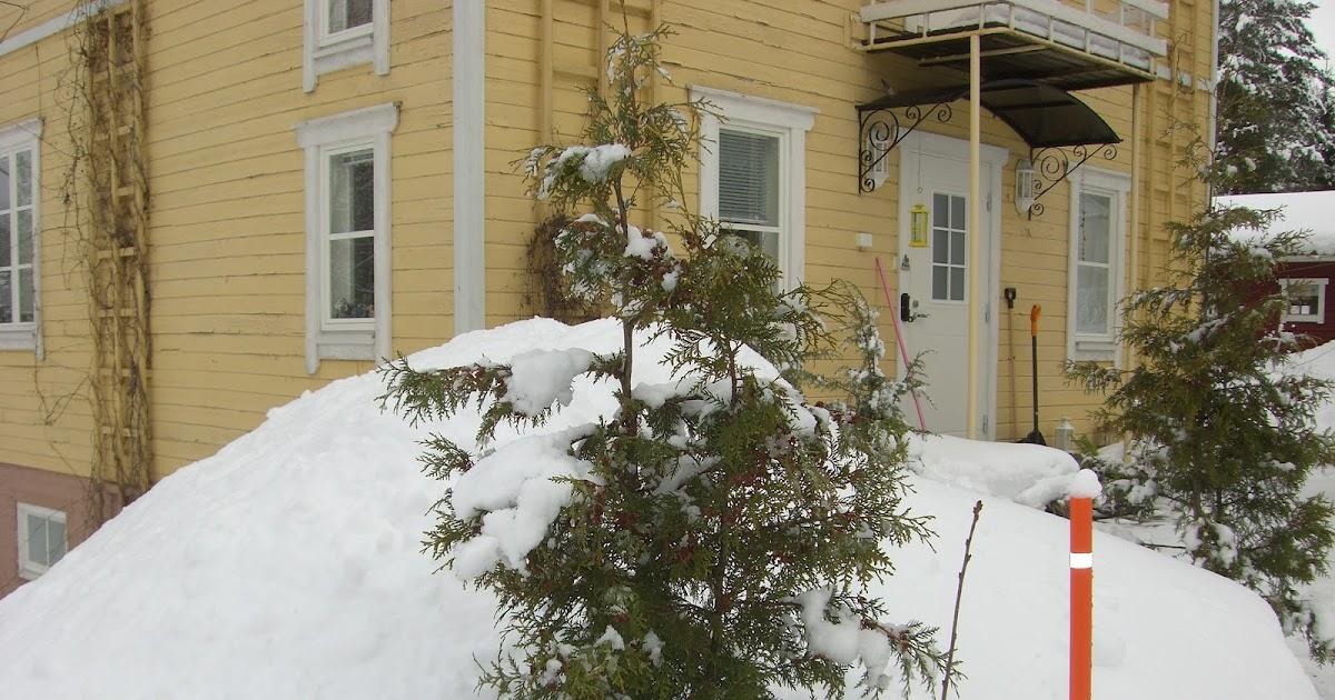 Uusi Lumi Vanhan Surma
