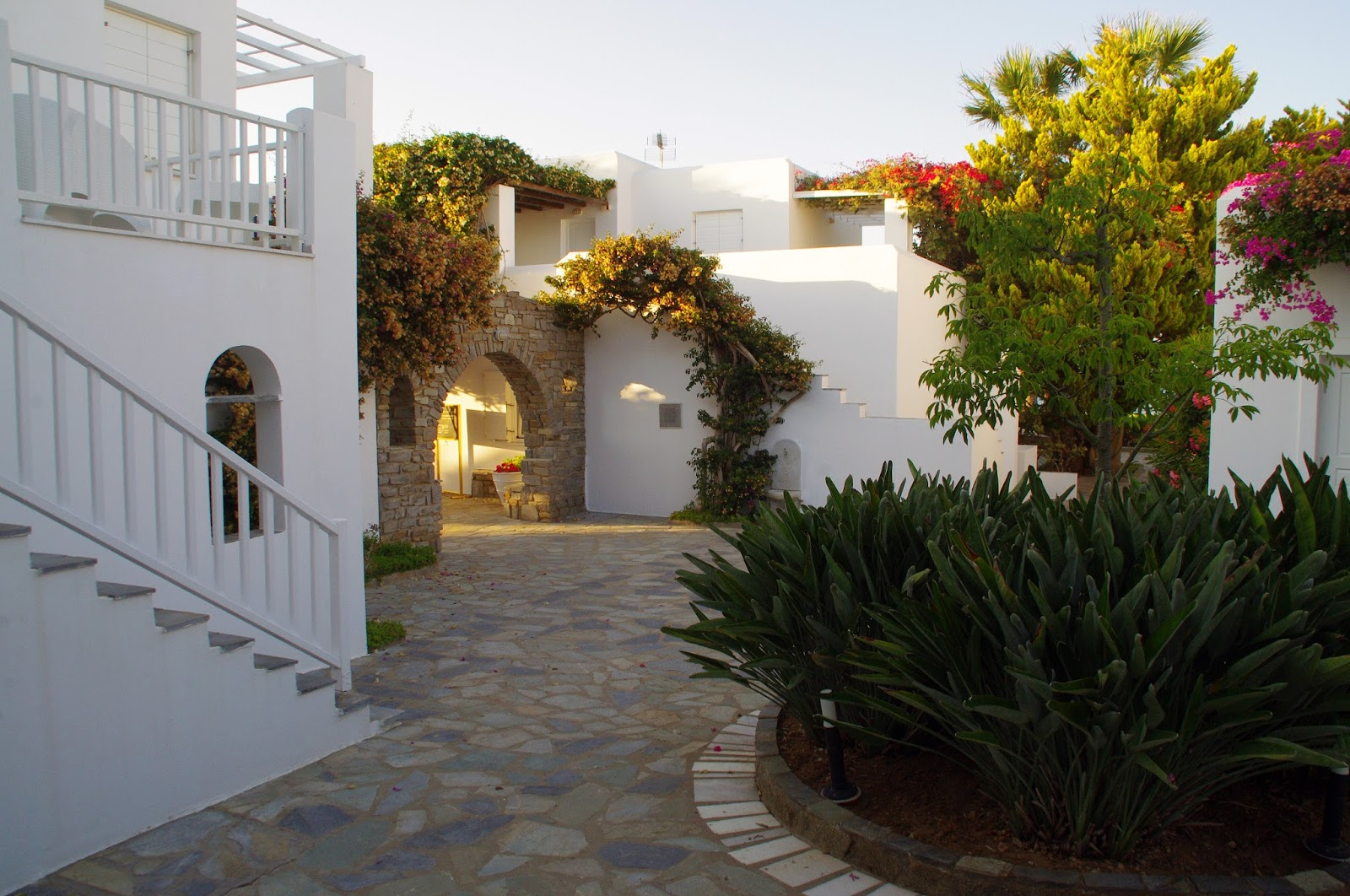 Astir of Paros Courtyard garden