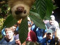 Gruppenfoto mit tierischen Freund lustig