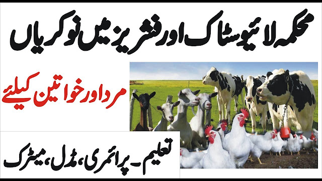 Livestock & Fisheries Department Government Jobs 2019