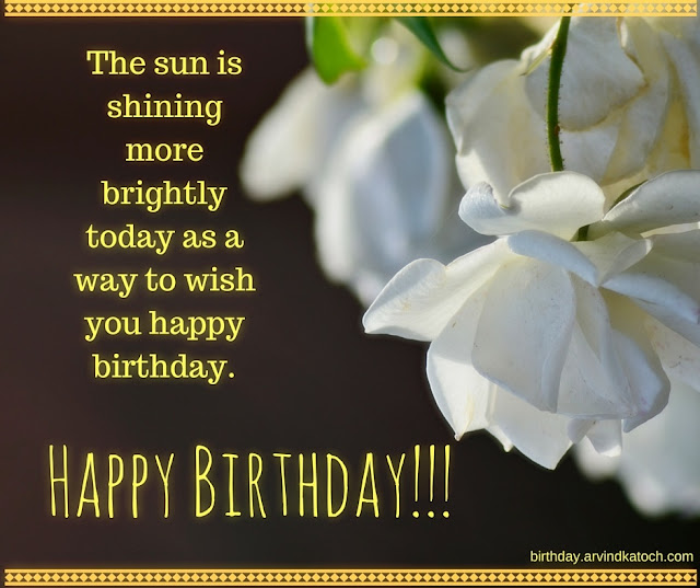 sun, shining, brightly, today, wish,  Happy birthday, White Rose, Birthday Card,