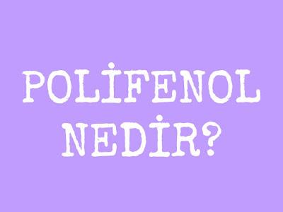 polifenol hangi gıdalarda bulunur