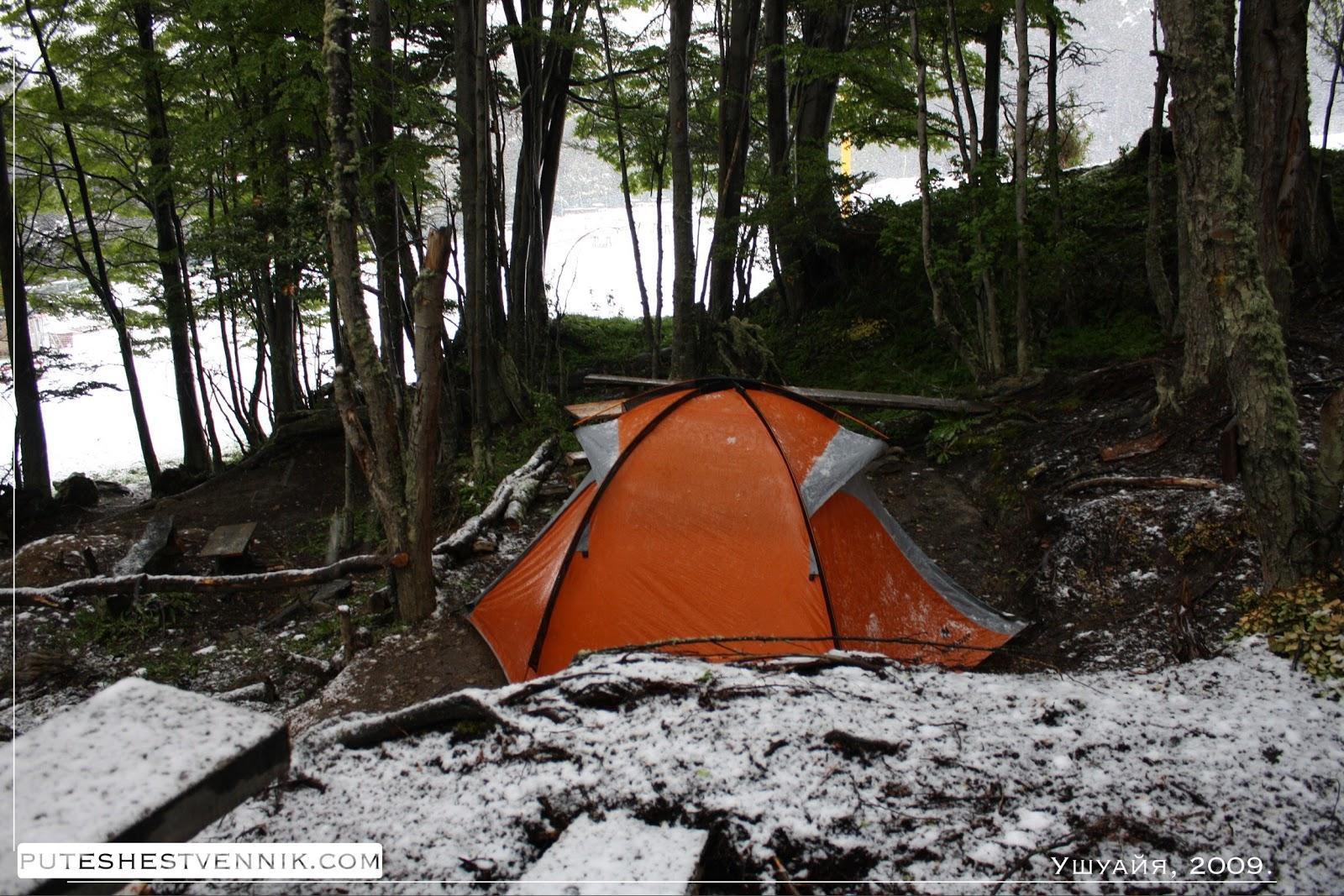 Моя палатка в лесу