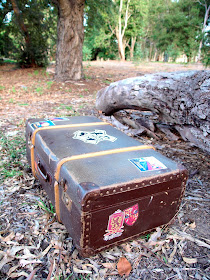 Harry potter trunk book set