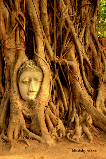 Ayutthaya Thailand Travel Guide Blog