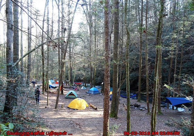 Panther Creek Falls Camp Ground