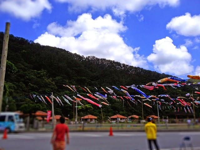奥ヤンバル鯉のぼり祭りの写真