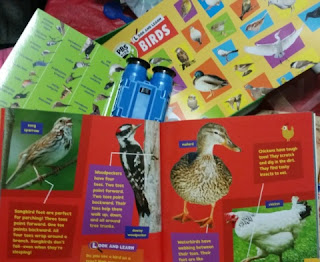pbs kids look and learn Birds set 2